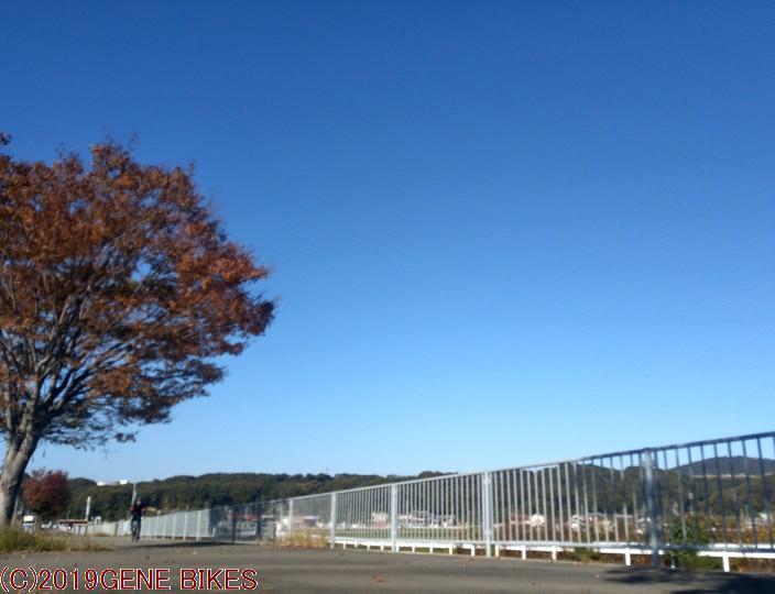 ひとときの暖かい秋 ショップライド11月12日 神戸西